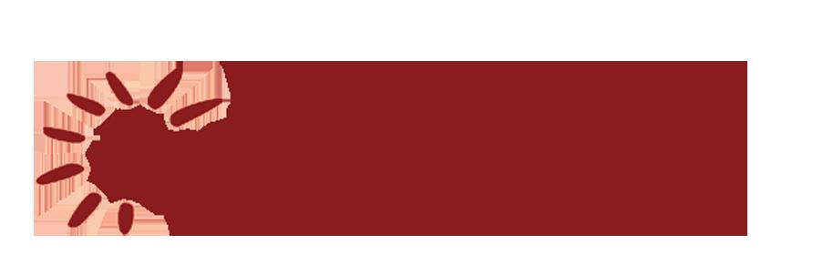 Eurovan 2000 Logo